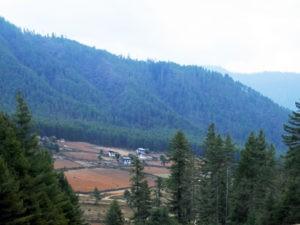 Phobjikha Valley - Bhutan